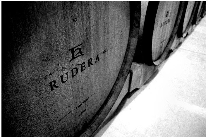 Rudera Vineyard 08