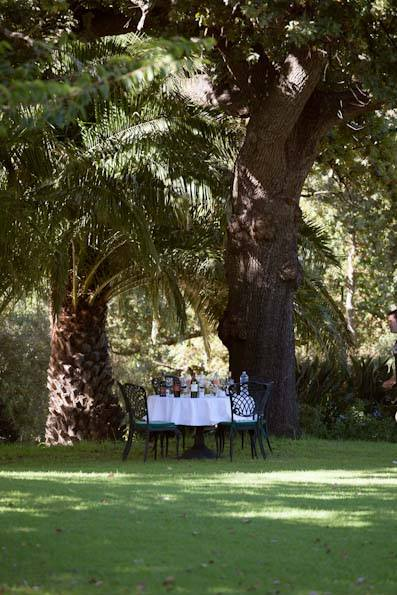 Rudera wines - tasting under the trees
