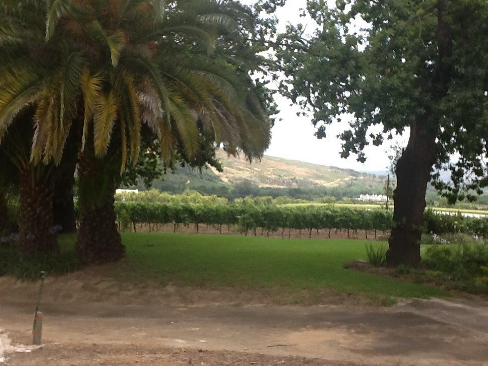 Rudera Wines - our garden with spectacular views